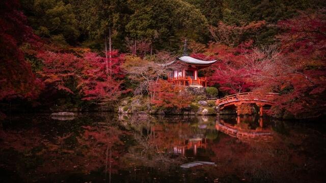 京都 ベストシーズン