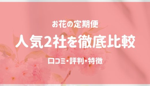 【お花のサブスク】おすすめ2社を徹底比較|花のある生活を定期便で