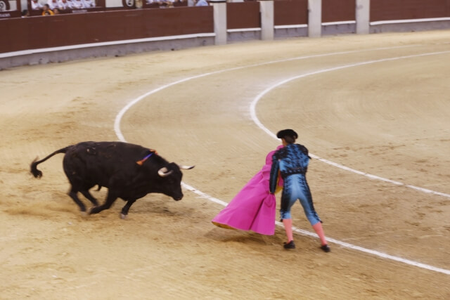 スペイン旅行 注意点